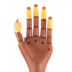 Bàn tay giả có khớp Nail Training Hand