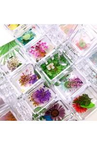 Hoa khô mix tổng hợp (hộp)...